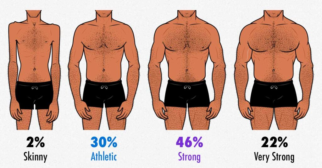 Survey results showing which degree of muscularity gay men find most attractive.