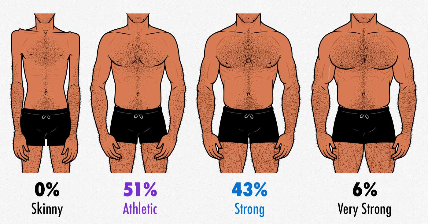 Illustration showing varying degrees of male muscularity.