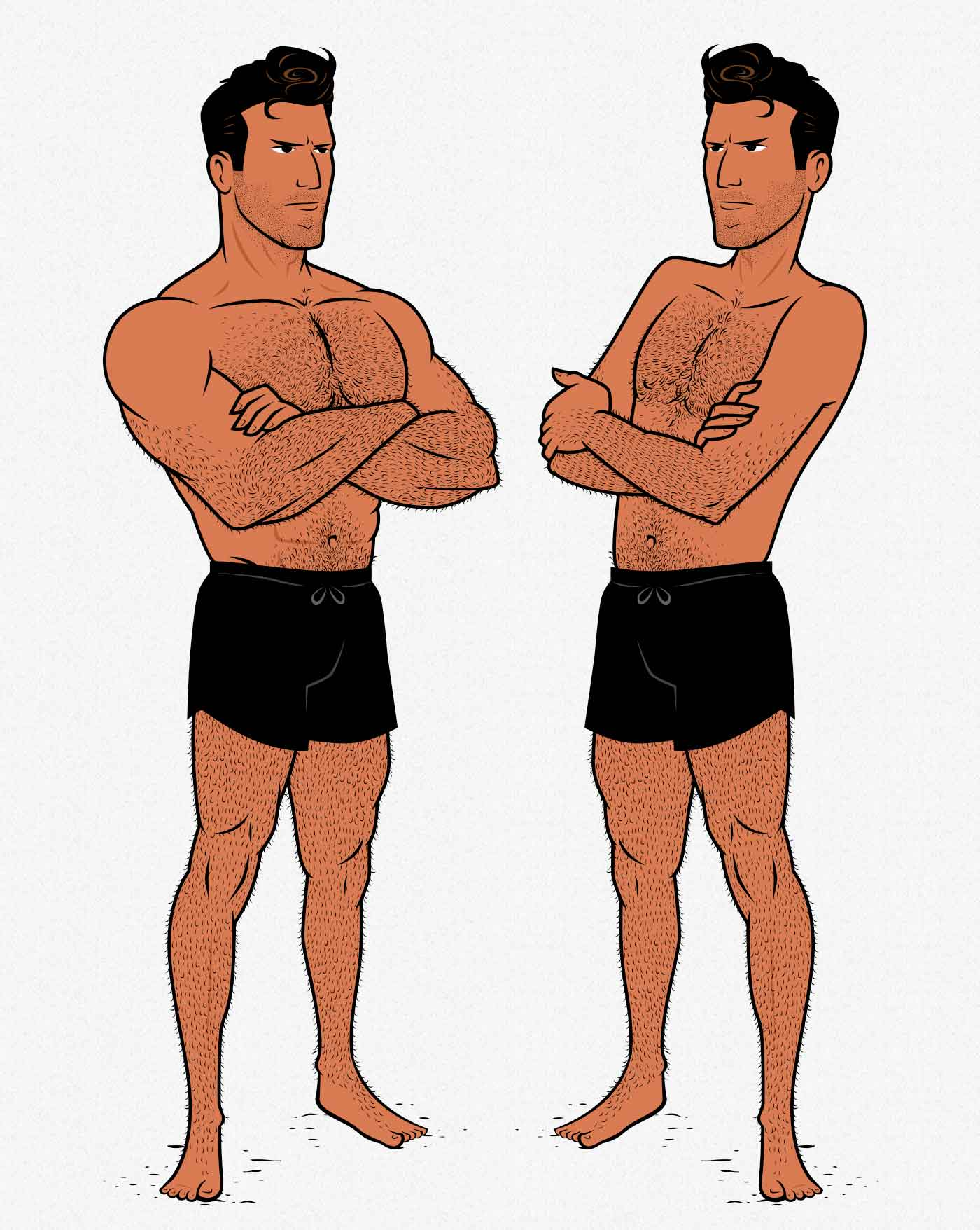 Illustration showing a lean, muscular bodybuilder and an athletic, healthy man.