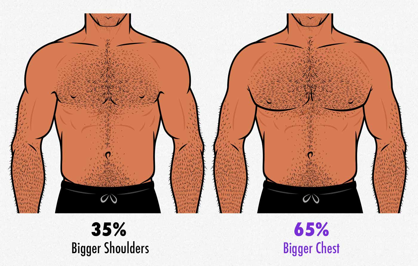 Illustration comparing shoulder-to-waist ratio against chest-to-waist ratio.