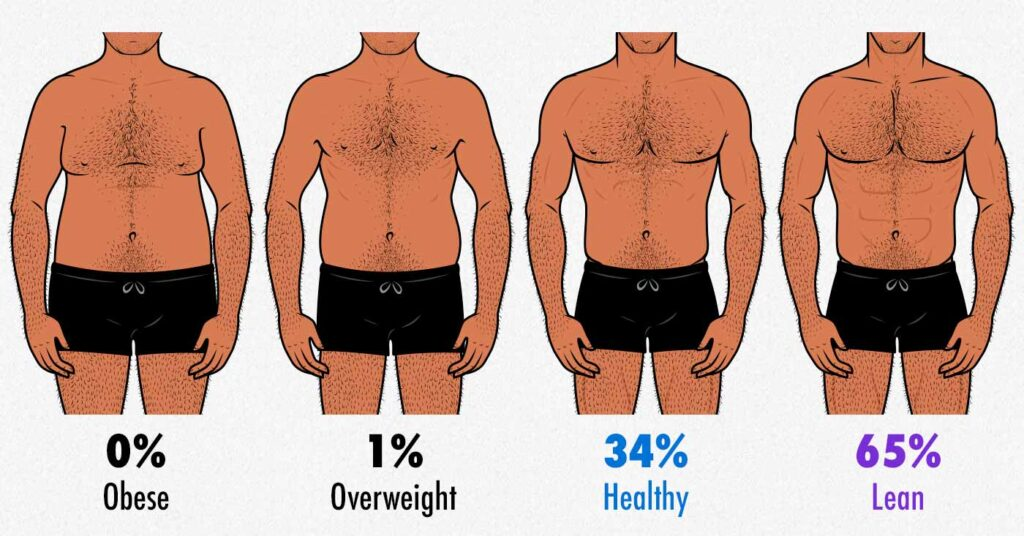 Survey results showing which body-fat percentage gay men prefer.