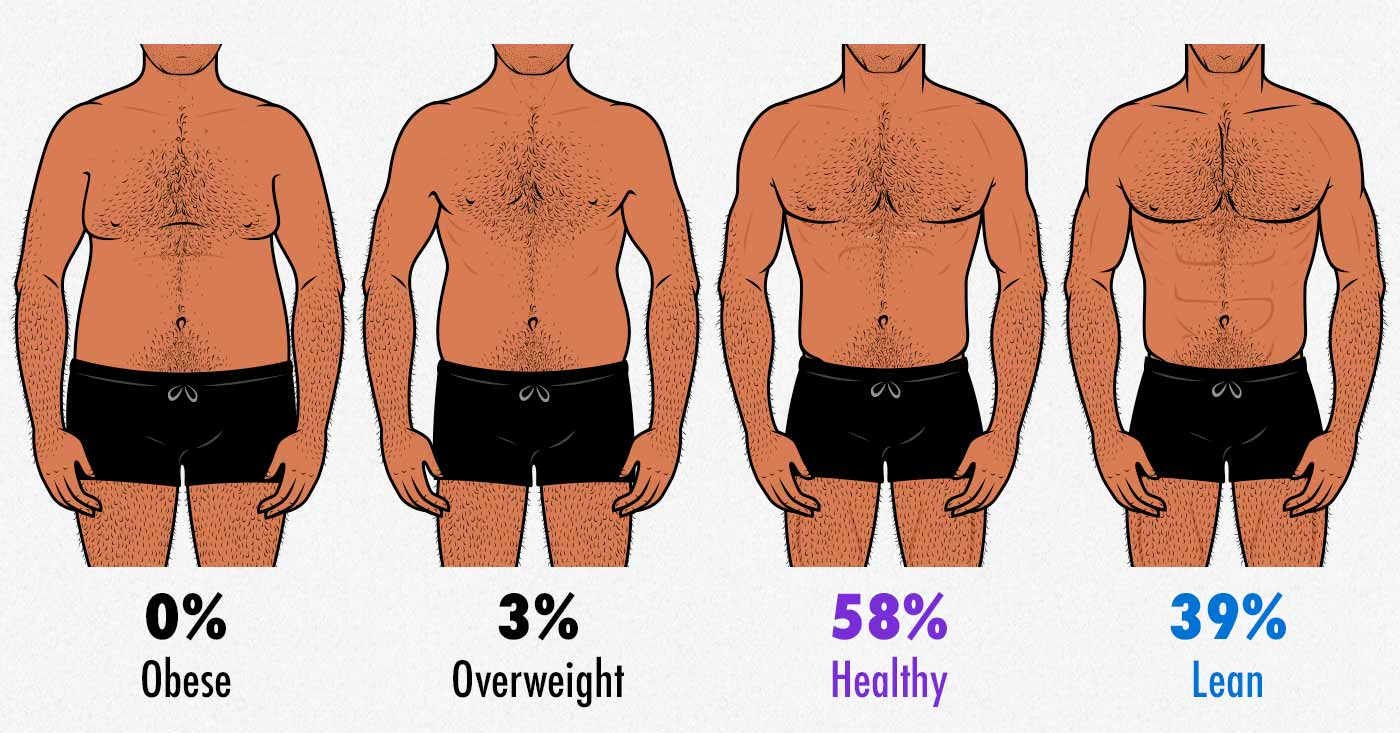 Illustration showing varying body-fat percentages in men.