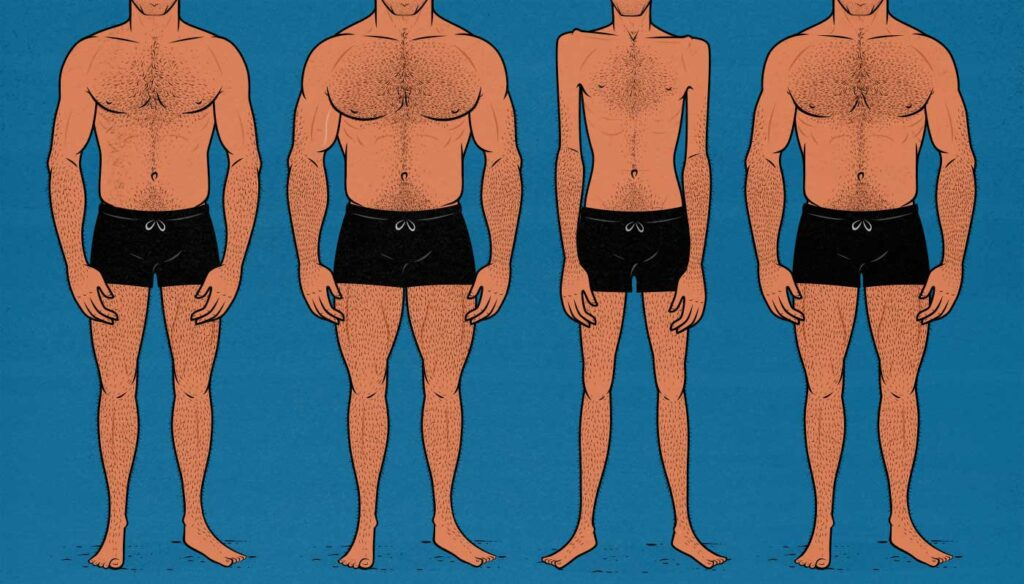 Illustration showing varying degrees of muscularity that women rated for attractiveness.