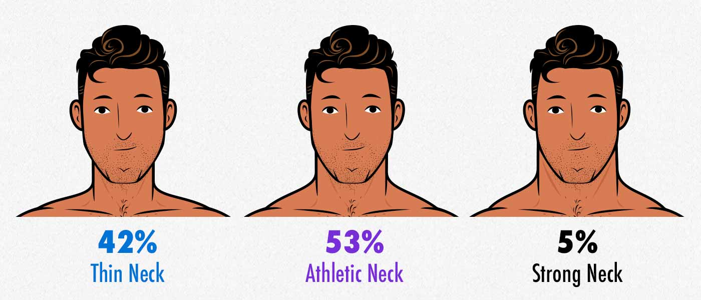 Illustration showing the most attractive male neck size as rated by women.