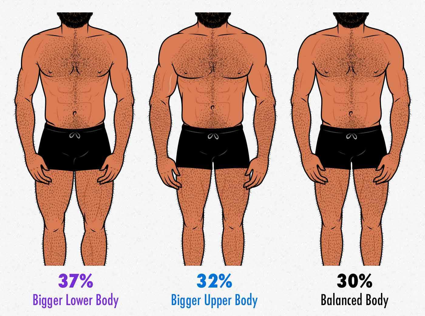 Survey results showing that gay men prefer men with more muscular lower bodies.