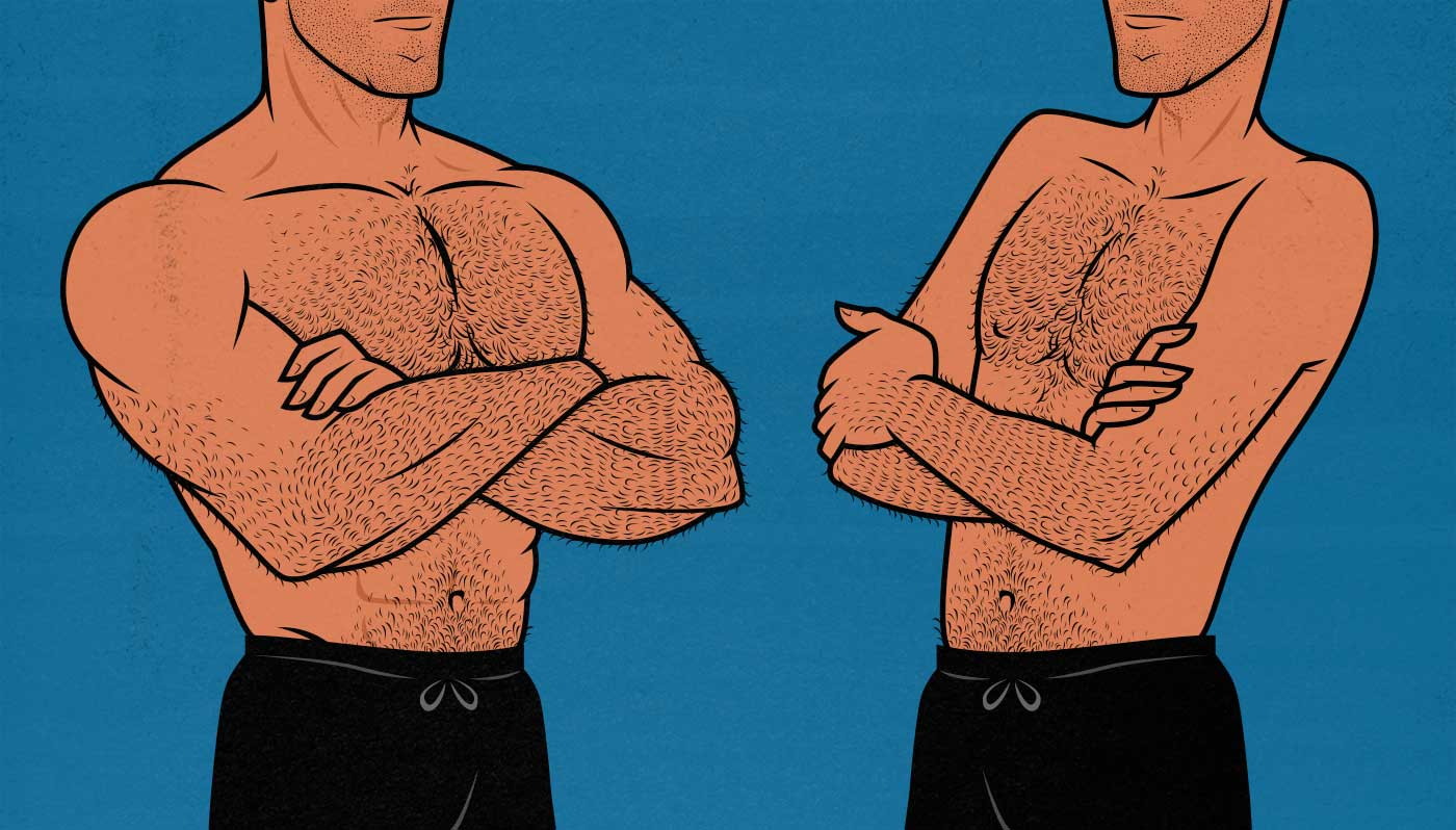 What body type do gay men find most attractive?
